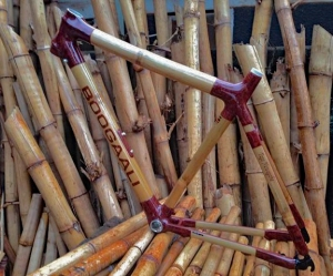 Boogaali-Bamboo Bikes